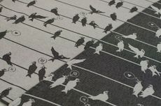 Frl. Hübsch Ringsling Birds On A Wire Anthrazit