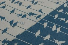 Frl. Hübsch Ringsling Birds On A Wire Petrol